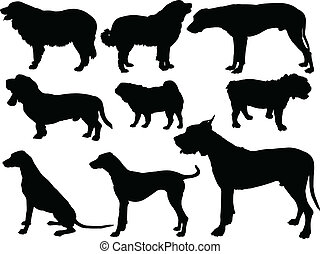 dog collection - vector - illustration of dog collection -...