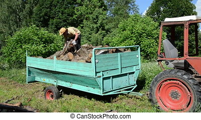 man unload wood trailer - Young strong worker man unload...