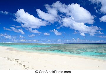 Desert tropical beach - The gorgeous turquoise sea in...
