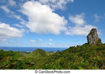 The Needle, Rarotonga - Beautiful view from The Needle,...