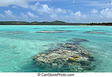 Uncontaminated environment - The colorful Aitutaki lagoon...