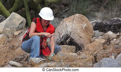 Geologist Woman Rock Sample - Female geologist or prospector...