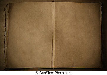 Open Vintage Book with Blank Pages