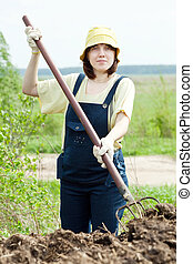 woman scatters manure in field - The woman scatters the...