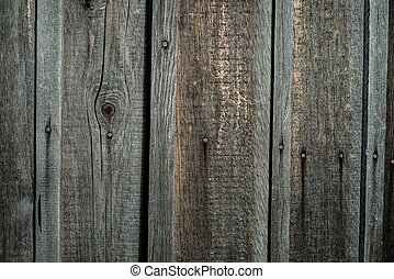 Wood texture close-up