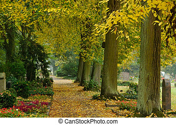 Peaceful autumn scene in a graveyard - A nice walking path...