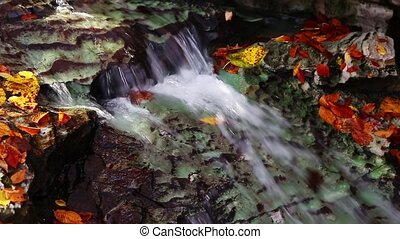 Autumn Stream Loop - Whitewater cascades over limestone rock...
