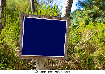 Blue track balnk sign in Mediterranean pine forest - Blue...