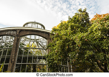 Plantage greenhouse in Amsterdam, autumn time