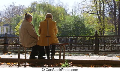 Senior Citizens In The Park - Senior women discussing...