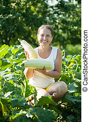 woman picking vegetable marrow