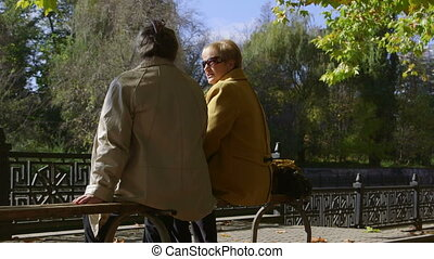 Senior Friends Talking In The Park - Senior women talking on...