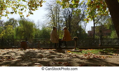 Senior women sitting on a bench in the park, talking