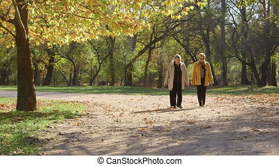 Two senior women strolling in the autumn city park, talking