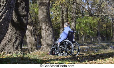 Disabled senior woman sitting on wheelchair in the autumn...