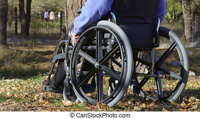 senior person in wheelchair - Disabled senior woman sitting...