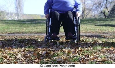 Disabled senior woman pushing wheelchair in the park