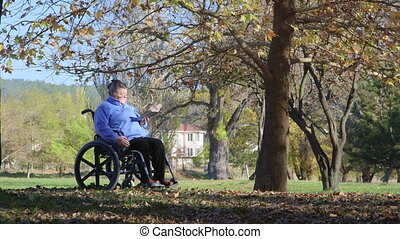 senior woman on wheelchair - Disabled senior woman on...