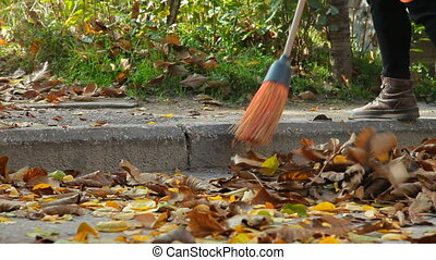 Cleaning leaves on the street