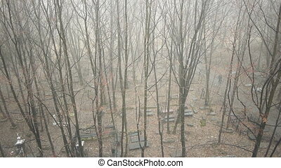 View on old cemetery at autumn day, moving camera - Man...
