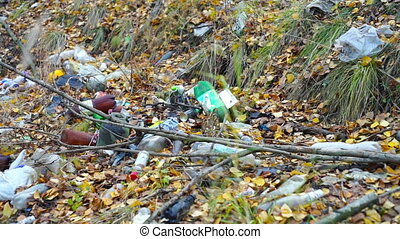 Garbage on forest glade at autumn day