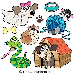 Pet collection 2