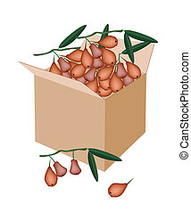 Red Water Apple in A Shipping Box - Fresh Fruits, Red Water...