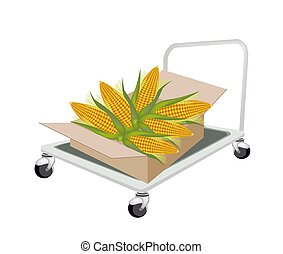 Hand Truck Loading Fresh Corns in Shipping Box - Hand Truck...