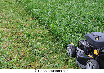 lawnmower - Green grass being mowed on a cool summer day
