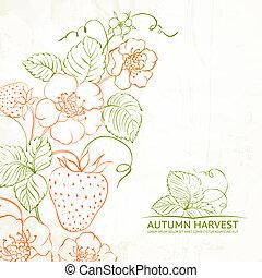 Strawberries brunch over sepia background illustration