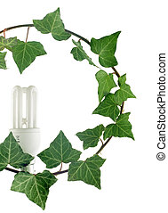 green light - eco fluorescent lamp blooming on ivy branch