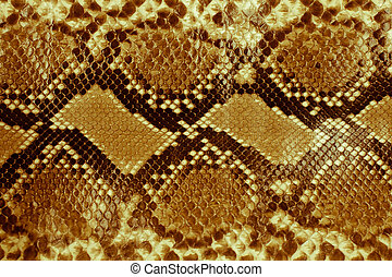Snake skin   - Snake skin pattern background