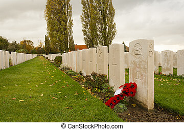 Poppies on Tyne cot cemetery first world war flanders...