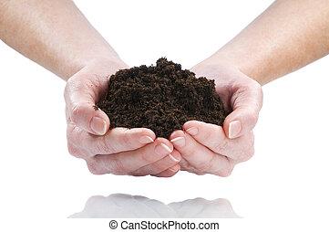 dirt - women hand holding soil isolated on white