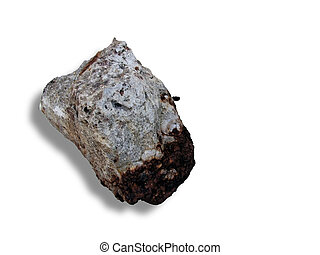 Meteorite on a white background