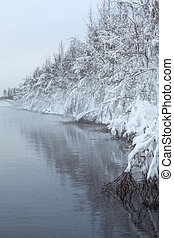 Black water and fog on lake with snow-covered trees on shore