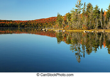 Lake reflection scene in the fall