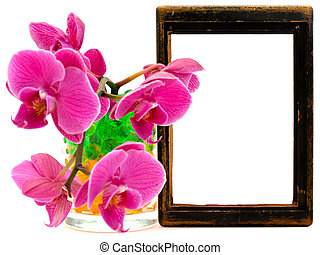 pink orchid and vooden frame - pink orchid flower in glass...