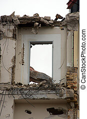 Demolition - The photograph of a demolition crane at work on...