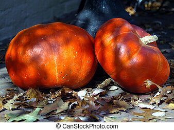orange pumpkins as decorations
