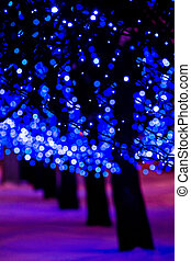 Bright blue holiday lights - Illuminated decoration of trees...