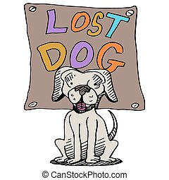 Lost Dog - An image of a lost dog.