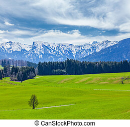 German idyllic pastoral countryside in spring with Alps in...