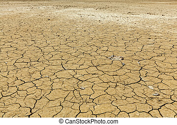 Cracked earth background texture