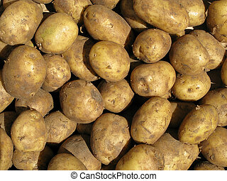 Close up of dirty cooking potatoes outside a greengrocers
