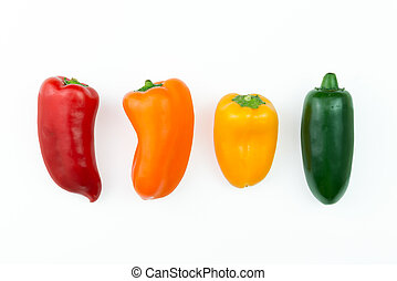 Jalapeno hot pepper - Red, orange, yellow and green jalapeno...