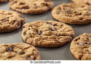 Homemade Chocolate Chip Cookies Ready to Eat