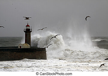 Storm with strong waves in the Portuguese coast