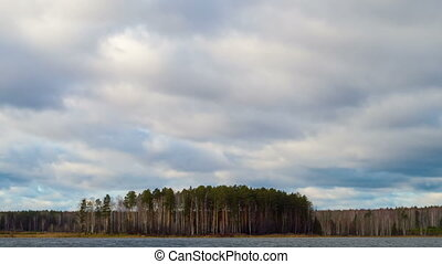 Rain clouds over a pine forest. Time Lapse