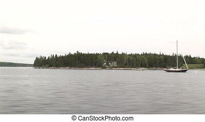 Coast in Southwest Harbor, Maine - American coast in...